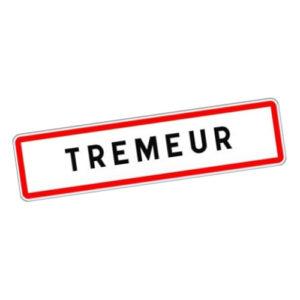 Commune de Trémeur